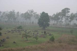 L'énigmatique (et fantômatique) plaine des jarres