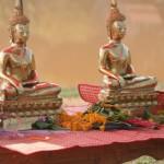 Les bouddhas sont de sortie