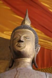 Notre meilleur ami au Laos (après Christophe bien sûr!)